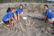 Volunteers protecting Sea Turtle nest