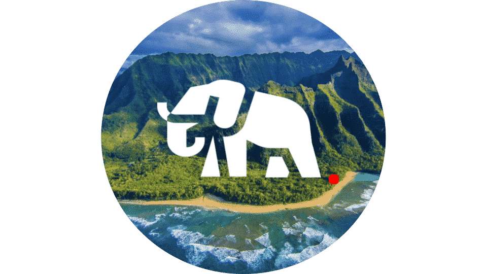 Animals Around The Globe